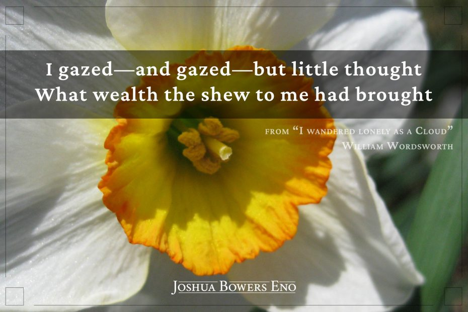 Photo of daffodil with Wordsworth quote